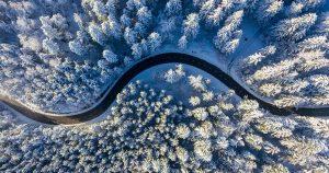 strada nel bosco in inverno-HFC Rivoira