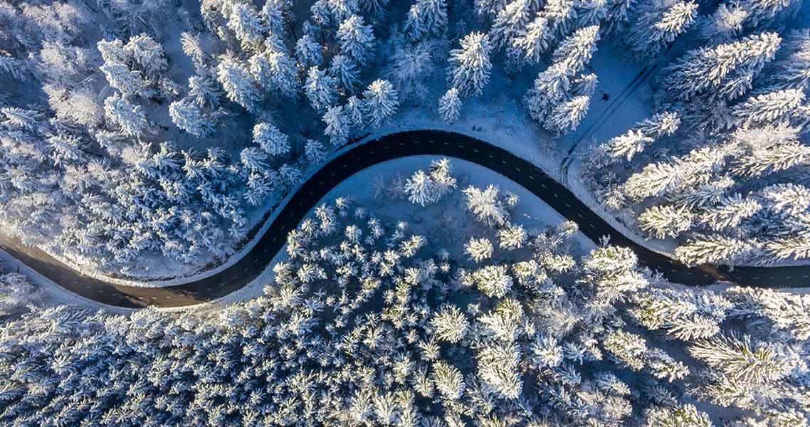 strada nel bosco in inverno-HFC di Nippon Gases Italia
